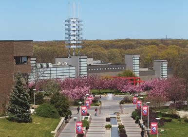 Stony Brook, NY; Stony Brook University: Springtime on the Acade